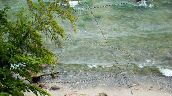 ein Baum, Stock und Steine am Strand