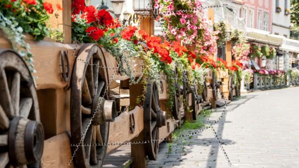 Holzgeländer mit Holzrädern und roten Geranien