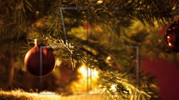 scheinendes Weihnachtsbäumchen im Jutesack