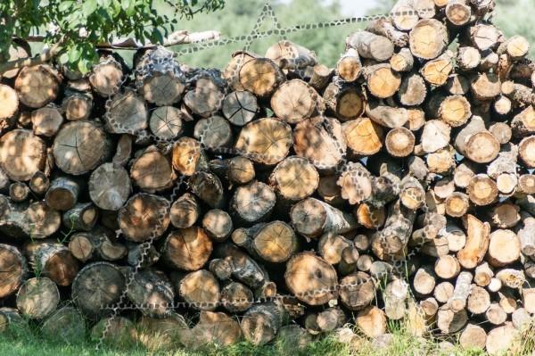 gestapeltes Brennholz im Halbschatten