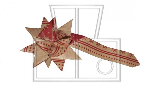 rot-brauner Stern aus Papier