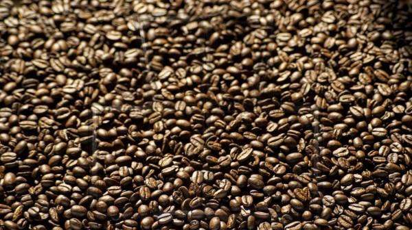 geröstete Kaffeebohnen bei Gegenlicht