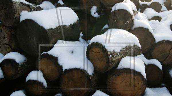 Holzklötzer unter Schnee